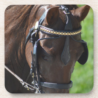 Walnut Hill Carriage Driving Horse Show Coaster