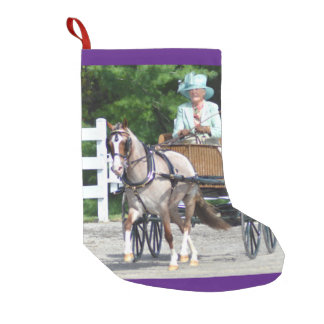 Walnut Hill Carriage Driving Show 2015