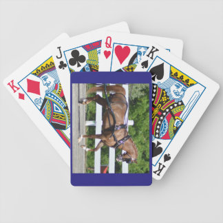 Walnut Hill Carriage Driving Show 2015 Bicycle Playing Cards