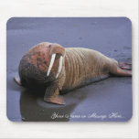 Walrus at Togiak National Wildlife Refuge Mouse Pads
