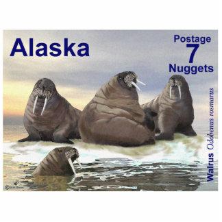 Walrus - Four Brothers - Alaska Postage Photo Sculpture Magnet
