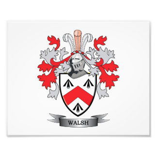 Walsh-Coat-of-Arms Art Photo
