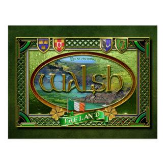 Walsh Family Banner Postcard