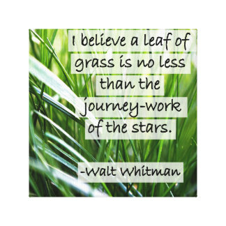 Walt Whitman Quote- Leaves of Grass Canvas Print