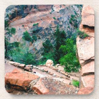 Walters Wiggles Zion National Park Utah Drink Coaster