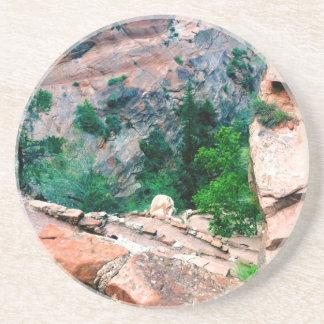 Walters Wiggles Zion National Park Utah Drink Coasters
