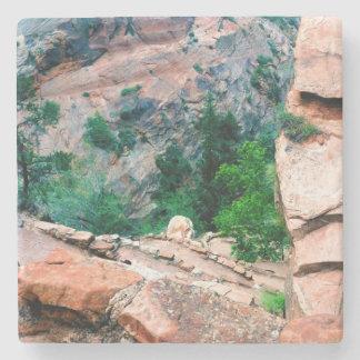 Walters Wiggles Zion National Park Utah Stone Coaster