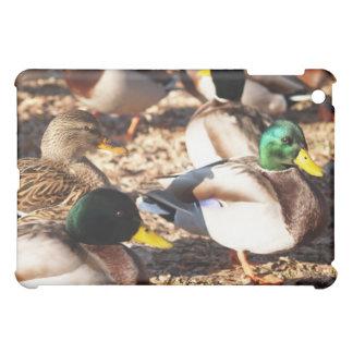 Wandering Ducks - iPad Cover For The iPad Mini