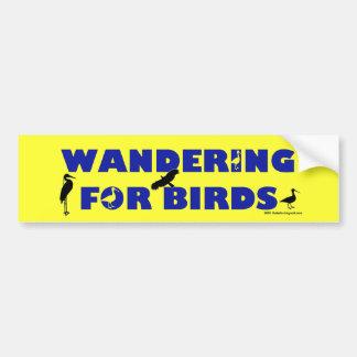 Wandering For Birds Bumper Sticker