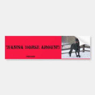 Wanna Horse around ? - Customized Car Bumper Sticker