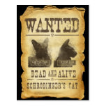 Wanted dead and alive.  Schroedinger's cat. Postcard