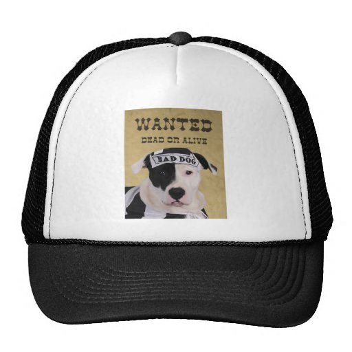 Wanted dead or alive mesh hats