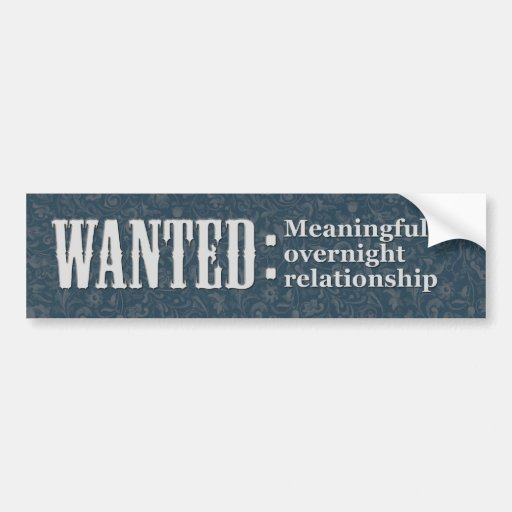 WANTED Meaningful overnight relationship Bumper Stickers