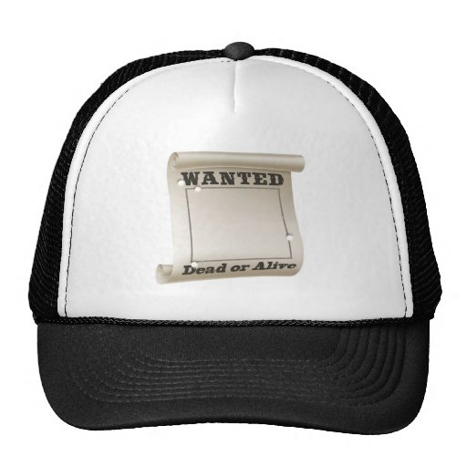 Wanted poster hat