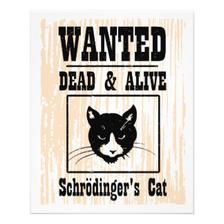 Wanted Schrodinger's Cat 11.5 Cm X 14 Cm Flyer