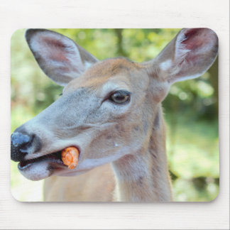 Wapiti on a diet! mouse pad
