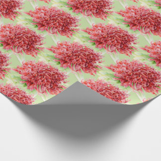 Waratah red botanica watercolor art wrap wrapping paper
