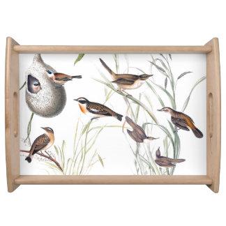 Warbler Birds Wildlife Animal Collage Serving Tray