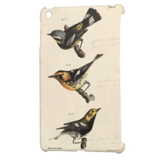 Warblers iPad Mini Case