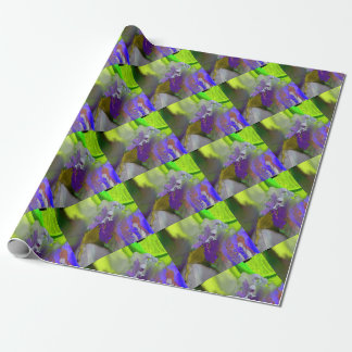 warm and cold colors splash wrapping paper