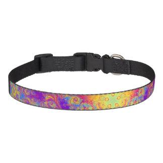 Warm Glow Star Bright Color Swirl Kaleidoscope Art Pet Collar