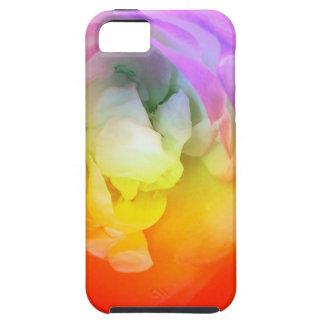 Warm Mood Art iPhone 5 Cases