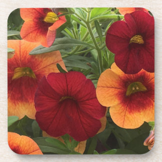 Warmth Of The Sun Floral Coaster