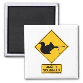 Warning Armed Squirrels Fridge Magnet
