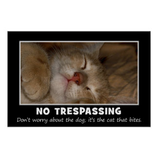 Warning to All Trespassers and Solicitors (S) Poster