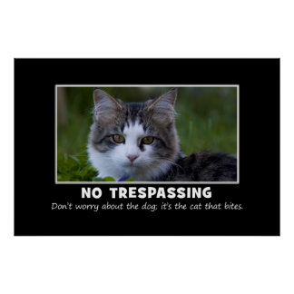 Warning to All Trespassers and Solicitors XL Posters
