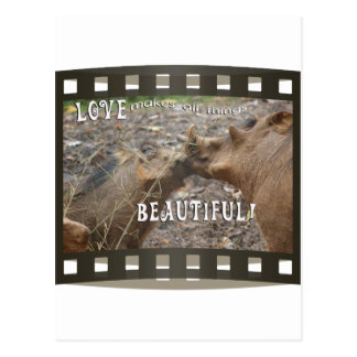 WARTHOG LOVE IS BEAUTIFUL KISS POSTCARD