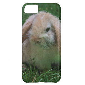 Wascally Wabbit iPhone 5 Case