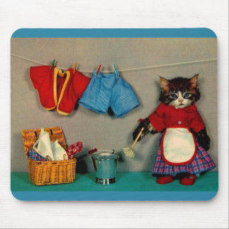 wash day for tabby kitten RPPC Mouse Pad