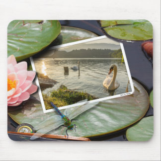 Washed Up Photos Mousepad - The Swan
