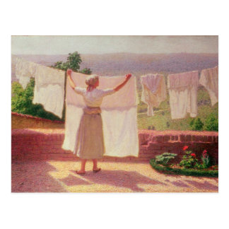 Washing in the Sun Postcard