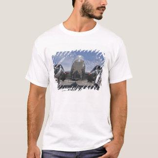 Washington, Arlington Fly-in, airshow. T-Shirt