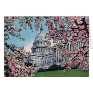Washington DC Capitol Hill Cherry Blossoms Card
