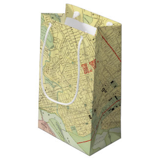 Washington, DC Small Gift Bag