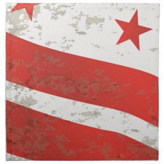 Washington DC State Flag Napkin