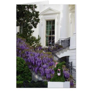 Washington DC White House Wisteria Easter Card