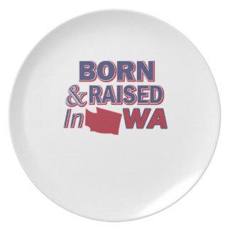 Washington design plate