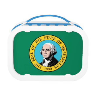 Washington Flag Lunch Box