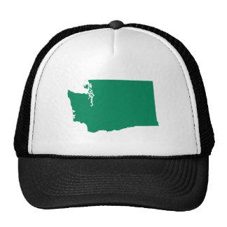 Washington in Green Cap