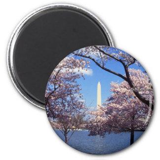 Washington Monument Through Cherry Blossoms 6 Cm Round Magnet