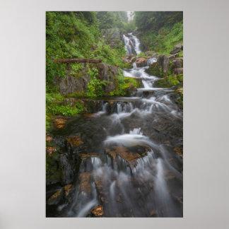 Washington, Mount Rainier National Park 2 Poster