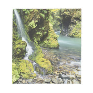 Washington, Olympic National Park, Seasonal Notepad