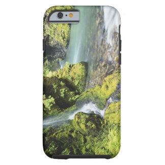 Washington, Olympic National Park, Seasonal Tough iPhone 6 Case