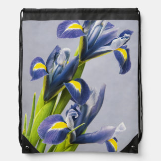 Washington, Redmond, Purple Irises Drawstring Bag