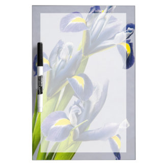 Washington, Redmond, Purple Irises Dry-Erase Whiteboard