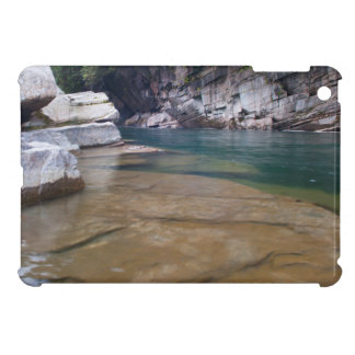Washington river's iPad mini cases